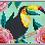 Thumbnail: Pixel XL 4 basisplaten Toekan