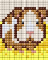 Guinea-pig_01_Animals_Liz_20x25.jpg