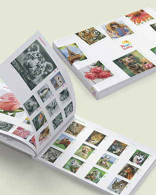 Catalogussen_mediabank3.jpg