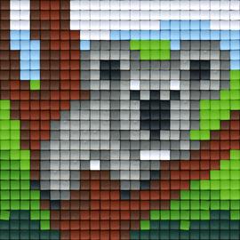 Koala_Animals_Liz_24x24.png