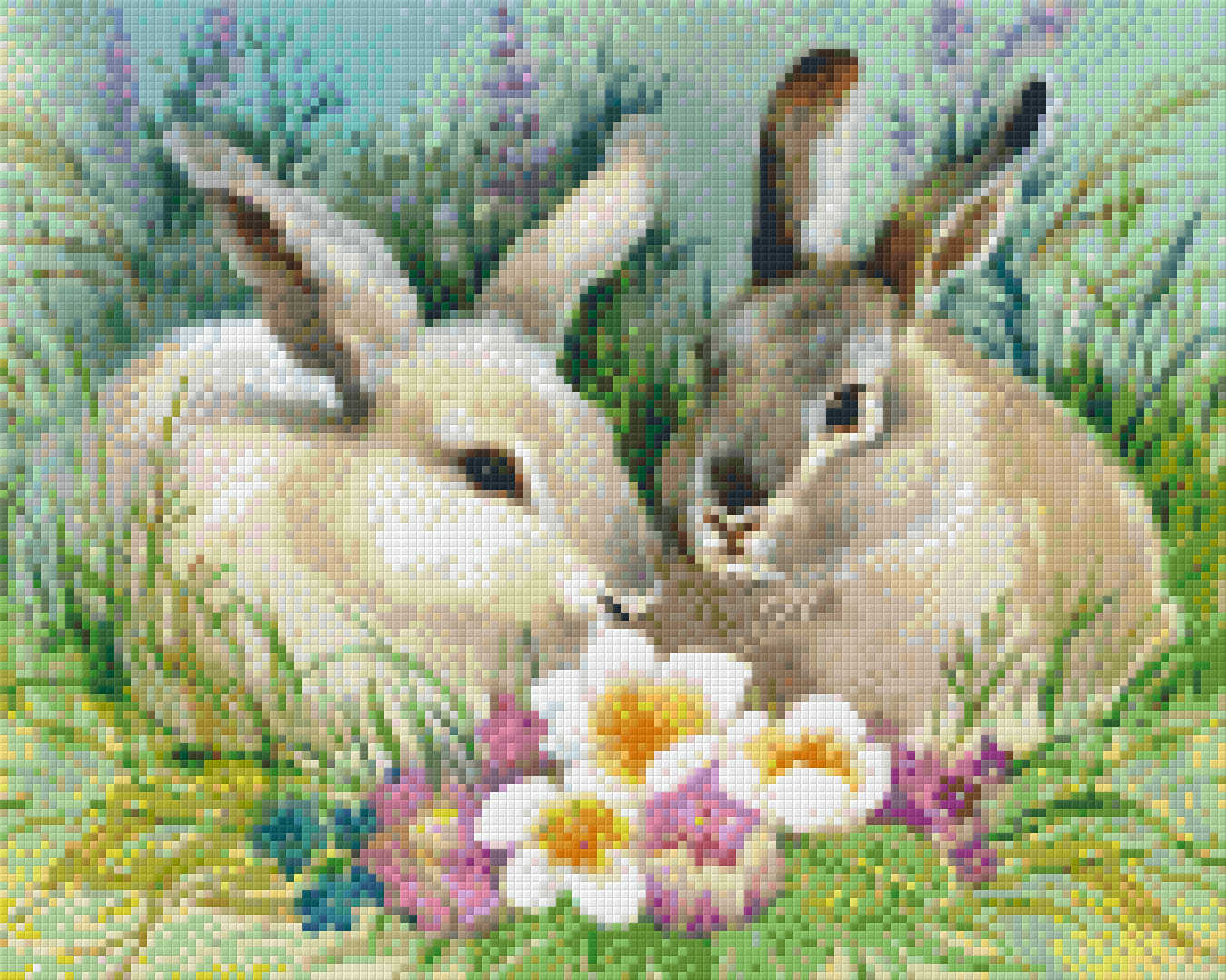 809_Rabbit -spring.phd.jpg