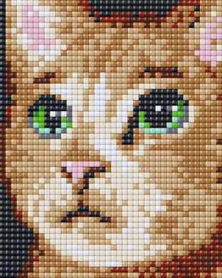 28024_Cat_01_Animals_Liz_40x50_XL.jpg