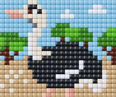 Ostrich_01_Animals_Liz_20x25_XL.jpg