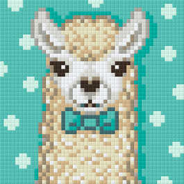 44021_Alpaca.phd.jpg