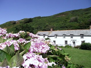 Boscastle and a Pagan Place
