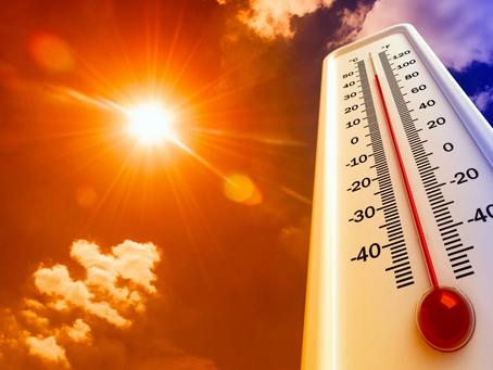 Cuidados ante las altas temperaturas