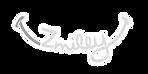 Zmiley-Logo_500x_edited.png
