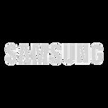 samsung-logo-7_edited.png