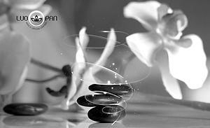 Equilibrio%20quantico%20blog_edited.jpg