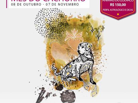 O Cão guardião de Outubro
