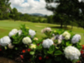 dalat-palace-golf-club_043502_full.jpg