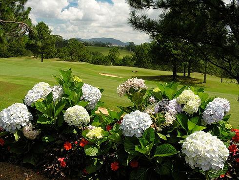 dalat-palace-golf-club_043502_full.jpg