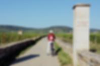 6730_Voie-Vignes-Chambolle-Premeaux1.jpg