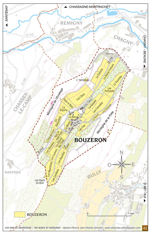 carte-vignoble-bouzeron.jpg