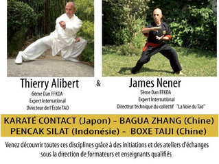 Stage Inter styles avec Thierry ALIBERT et James NENER