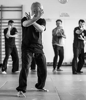 cours arts martiaux, adultes, enfants, la rochelle, ciré d'aunis, rochefort, esnandes, l'houmeau, saint sauveur, saint jean de liversay, arts internes, arts externes, energetique, kali, silat, kenpo, qi gong, tai chi, bagua, kung fu, charente maritime, yoga, meditation