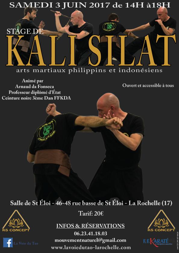 Stage de Kali Silat, le 3 Juin 2017 à La Rochelle
