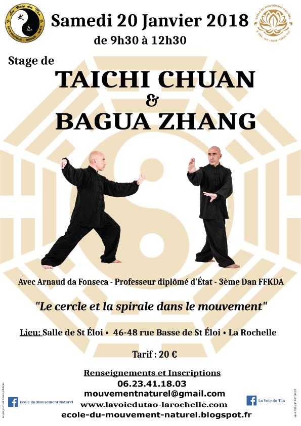 Samedi 20 Janvier 2018, stage de Tai Chi Chuan et Bagua Zhang