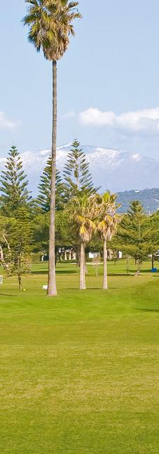 Golf & Landscape
