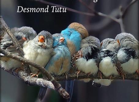 Desmond Tutu on Belonging