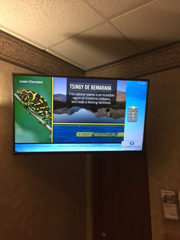 Choice Media Digital Signage In Waiting Room
