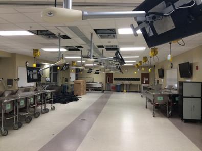 Flexview at UCF Cadaver Lab