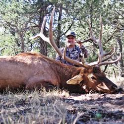 Mike Mecham's Elk 057