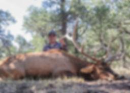 Mike Mecham's Elk 065-2.jpg