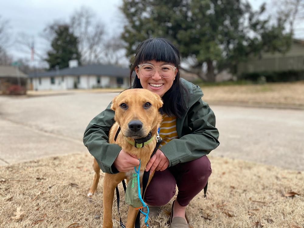 Two Week Boarding and Training- Basenji Dog Training in Tulsa and Skiatook Oklahoma