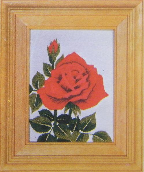Kit 631 Roses Size S
