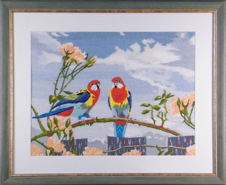 A322 Rosellas on Roses