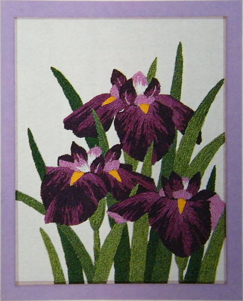 Kit 712 Irises  Size 1