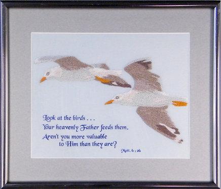 A104 Silver Gulls  Size 1
