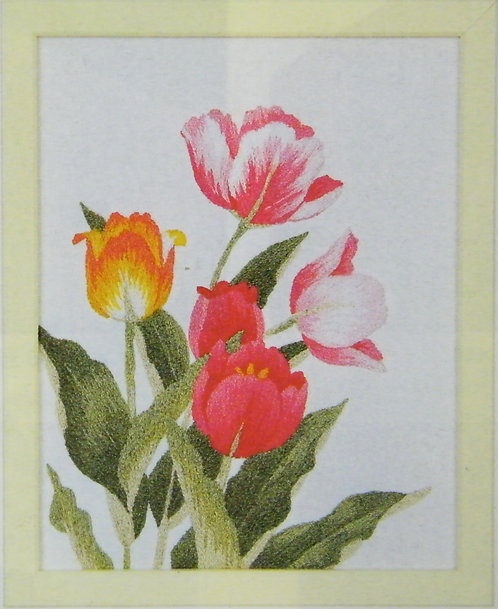 Kit 742 Tulips  Size 1