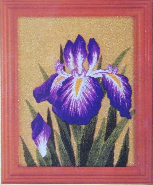 Kit 723 Irises  Size 1