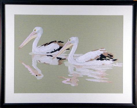 A602 Pelicans  Size 6