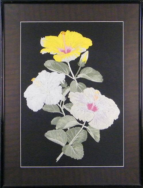 A604b Hibiscus (Black)  Size 6