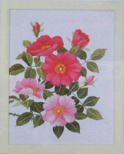 Kit 744 Wild Roses  Size 1