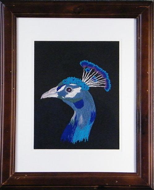 A135 Peacock