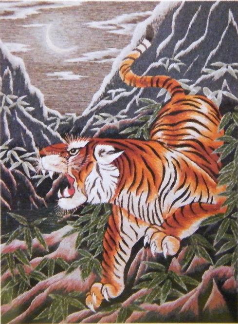 Kit 501 Ferocious Tiger/Moonlight  Size 12