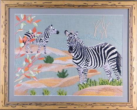 G354 Zebras