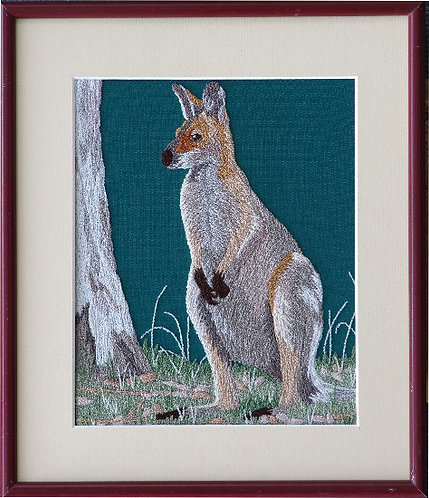 A107 Wallaby