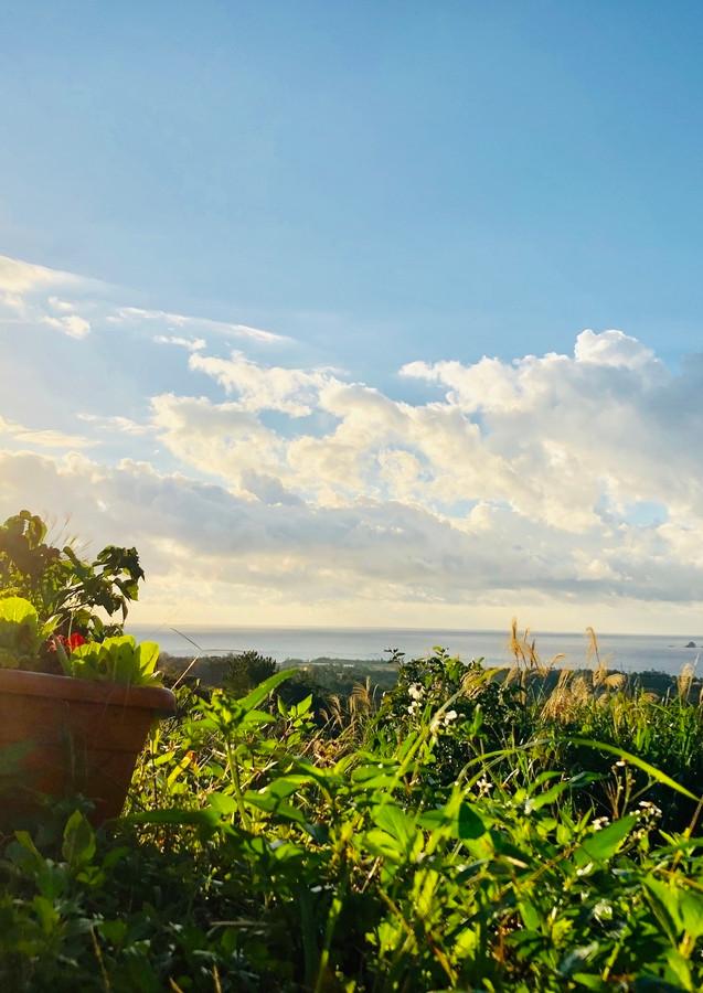 Sangoのお山から見える景観