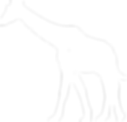 giraff vit.png
