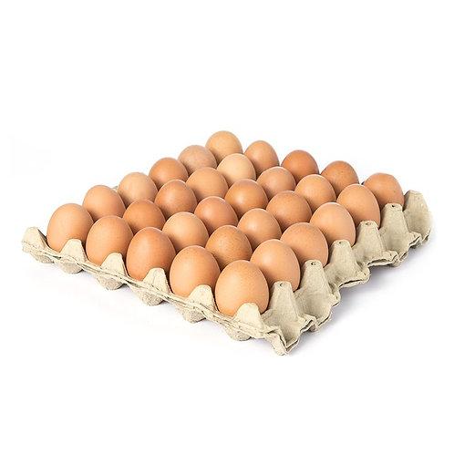 Cubeta de Huevos grandes