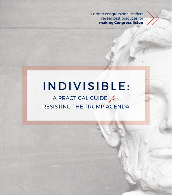 The Indivisible Guide to Grassroots Action
