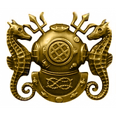 Navy Diving Officer-500x500.png