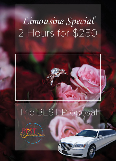 limo promo proposals.jpg