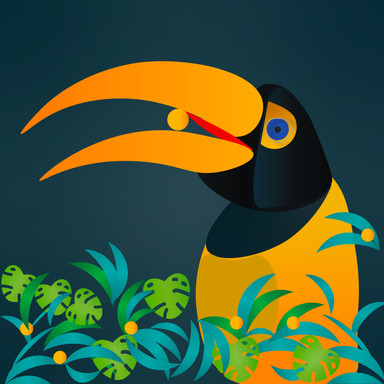Tim the Toucan