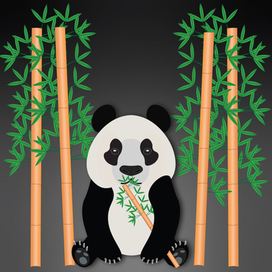 Peter the Panda